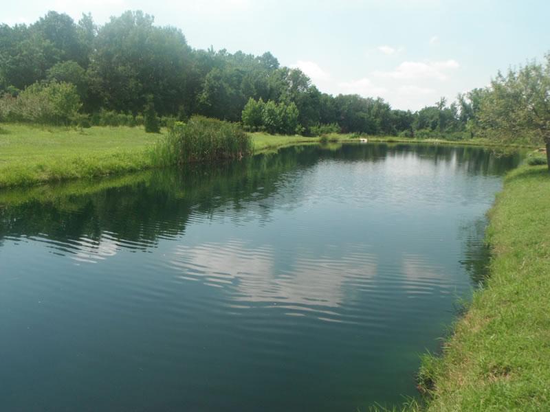Aquatic plus pond management dayton ohio pond aeration for Garden pond management